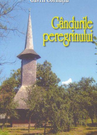 PEREGRINULUI-1.jpg